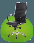 Cadeiras em pele verdadeira